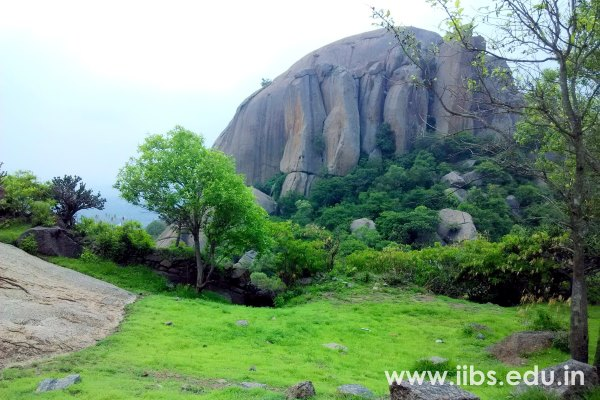 IIBS ALP: Night Camping & Adventure Activities at Sholay Hills