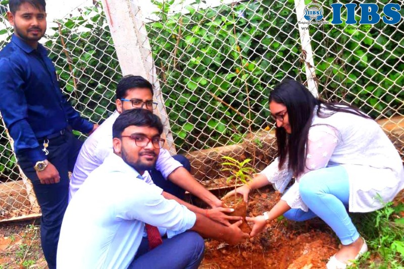 Sapling Plantation & Teachers Day Celebration - IIBS Bangalore