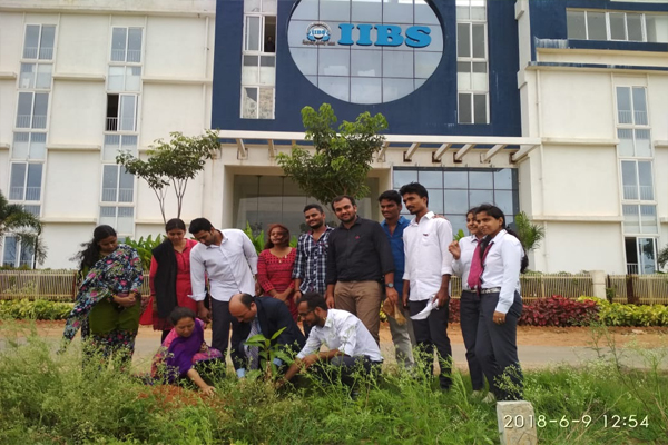 World Environment Day celebrated by Tree Plantation Program by IIBS Rotaract Club