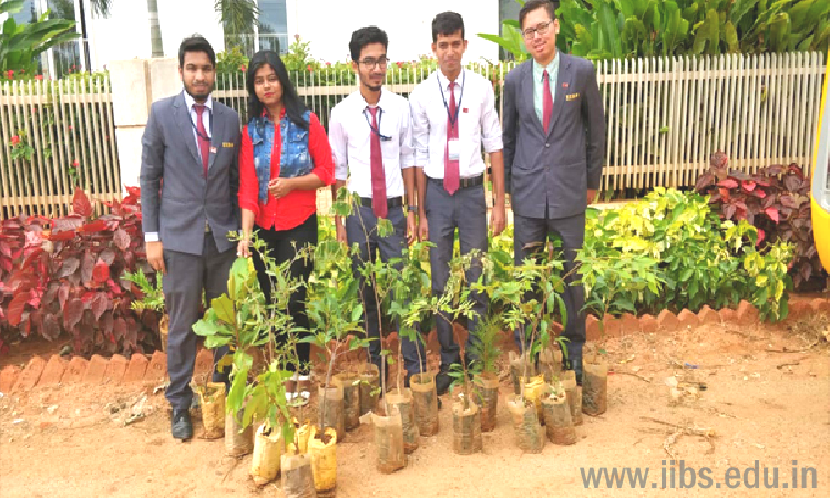 What should you do after MBA Agribusiness? | IIBS B-School Bangalore