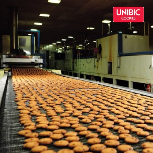 Industrial visit IIBS MBA Students to UNIBIC Cookies Company